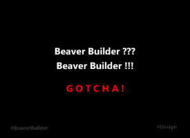 "Titel zum Artikel ""I got the Beaver Builder"""